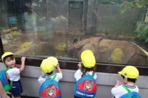 金沢自然動物公園・・・
